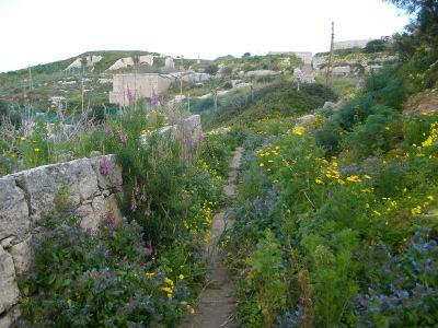 mosta dwejra walking route Victoria Lines Malta
