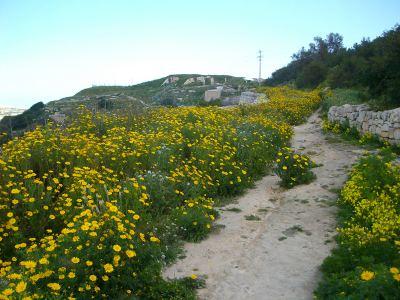 Victoria Lines Malta fort mosta malta trekking