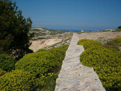 Naxxar Mosta walking route Malta's Victoria Lines