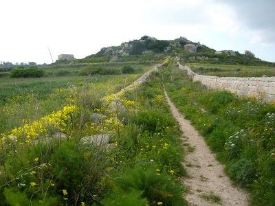 mosta to dwejra lines Victoria Lines Malta walk hike trek route maltese path guide